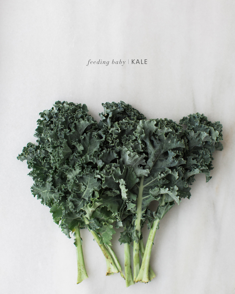 Feeding baby vegetable pures kaley ann baby food recipes and ideas kale forumfinder Images